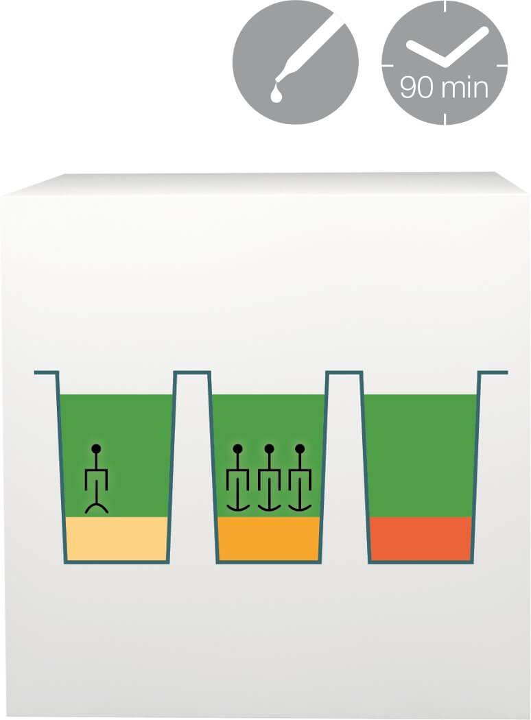 lab-procedure-4