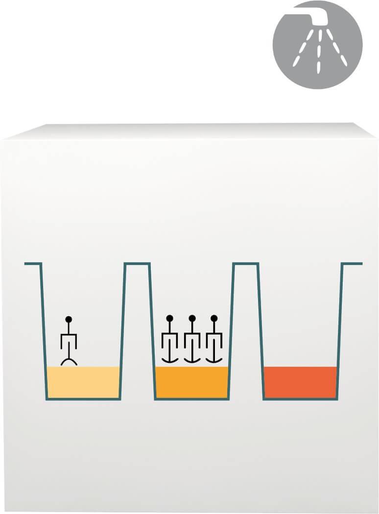 lab-procedure-5
